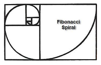 FIBONACCI SPIRAL drawing