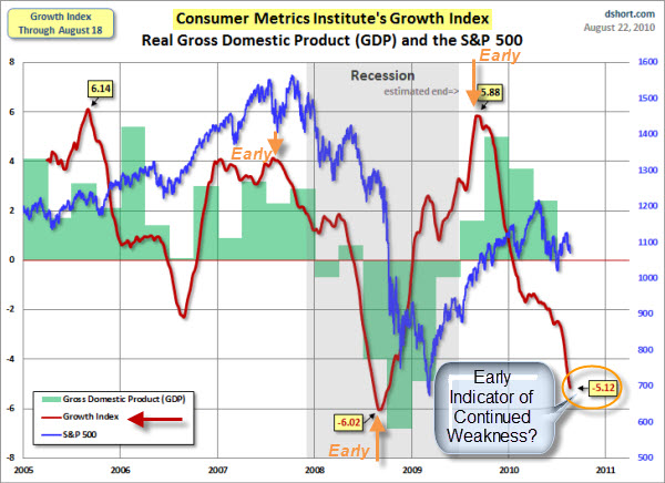 100822 Consumer Metrics Growth Index